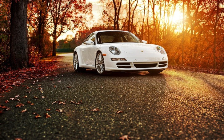 7000044-porsche-911-road-autumn
